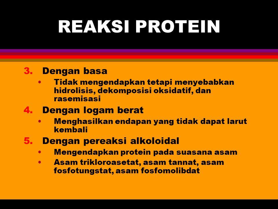 REAKSI PROTEIN 3.Dengan basa Tidak mengendapkan tetapi menyebabkan hidrolisis, dekomposisi oksidatif, dan rasemisasi 4.Dengan logam berat Menghasilkan