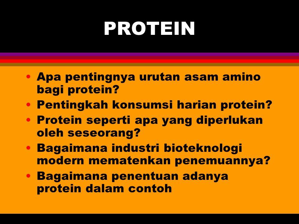 PROTEIN Apa pentingnya urutan asam amino bagi protein? Pentingkah konsumsi harian protein? Protein seperti apa yang diperlukan oleh seseorang? Bagaima