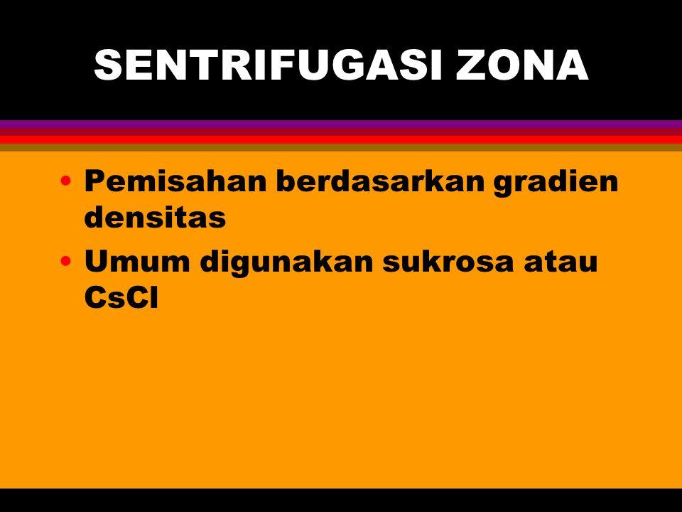 SENTRIFUGASI ZONA Pemisahan berdasarkan gradien densitas Umum digunakan sukrosa atau CsCl