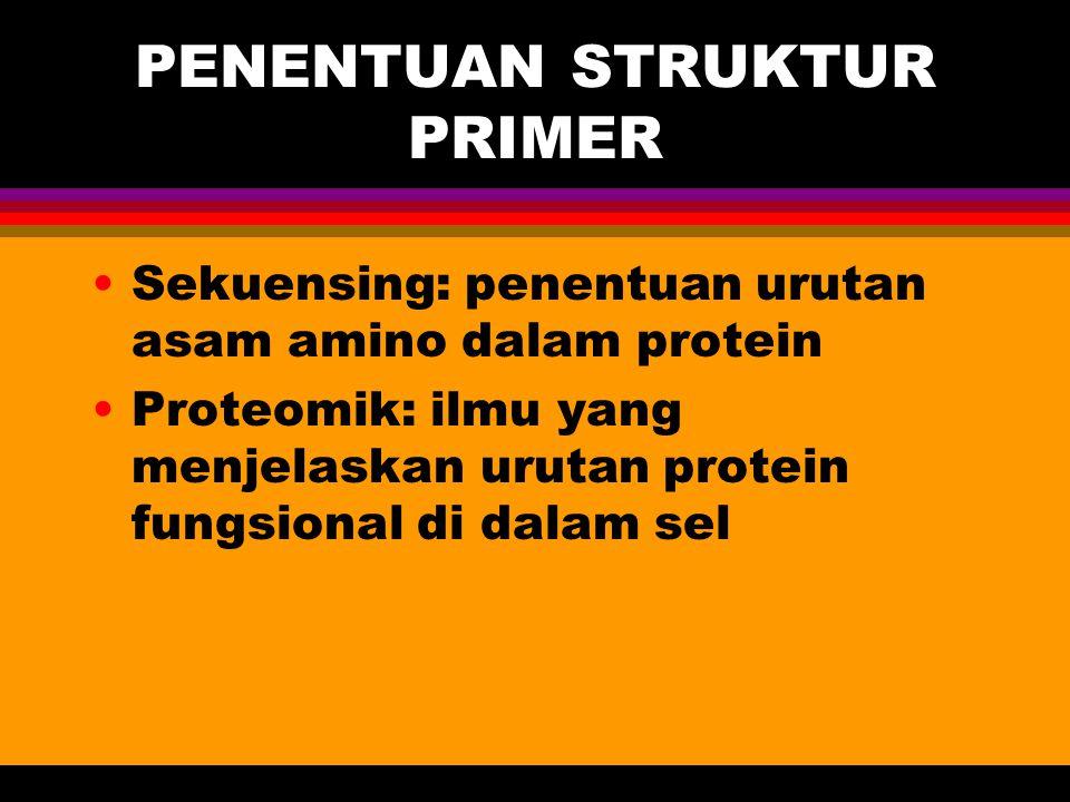 PENENTUAN STRUKTUR PRIMER Sekuensing: penentuan urutan asam amino dalam protein Proteomik: ilmu yang menjelaskan urutan protein fungsional di dalam se