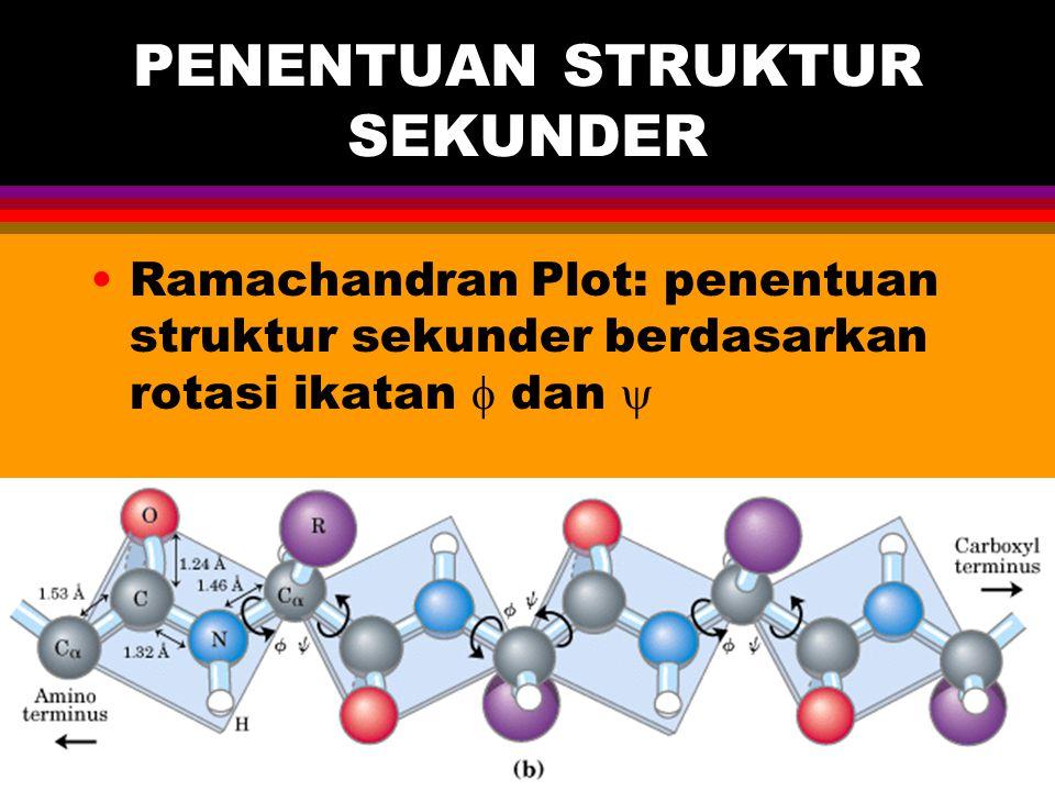 PENENTUAN STRUKTUR SEKUNDER Ramachandran Plot: penentuan struktur sekunder berdasarkan rotasi ikatan  dan 