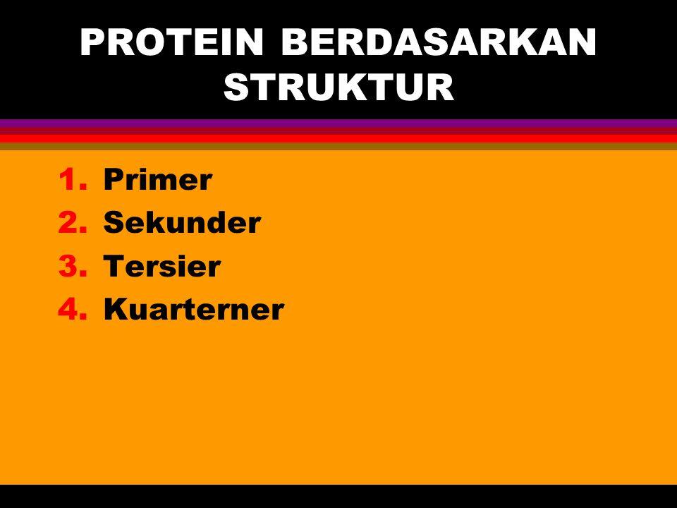 PROTEIN BERDASARKAN STRUKTUR 1.Primer 2.Sekunder 3.Tersier 4.Kuarterner