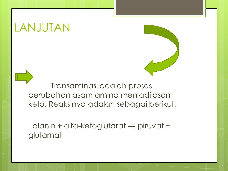 LANJUTAN Transaminasi adalah proses perubahan asam amino menjadi asam keto. Reaksinya adalah sebagai berikut: alanin + alfa-ketoglutarat → piruvat + g