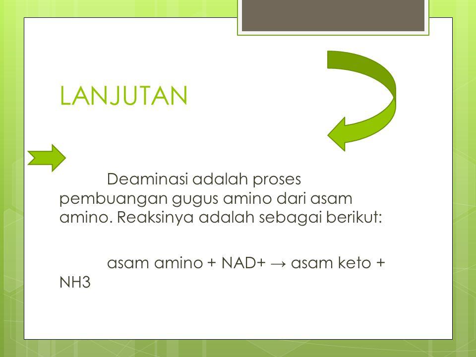 LANJUTAN Deaminasi adalah proses pembuangan gugus amino dari asam amino. Reaksinya adalah sebagai berikut: asam amino + NAD+ → asam keto + NH3