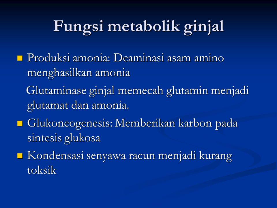 Fungsi metabolik ginjal Produksi amonia: Deaminasi asam amino menghasilkan amonia Produksi amonia: Deaminasi asam amino menghasilkan amonia Glutaminas