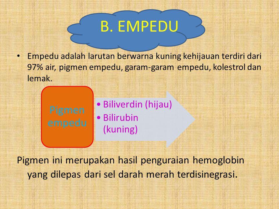 B. EMPEDU Empedu adalah larutan berwarna kuning kehijauan terdiri dari 97% air, pigmen empedu, garam-garam empedu, kolestrol dan lemak. Pigmen ini mer