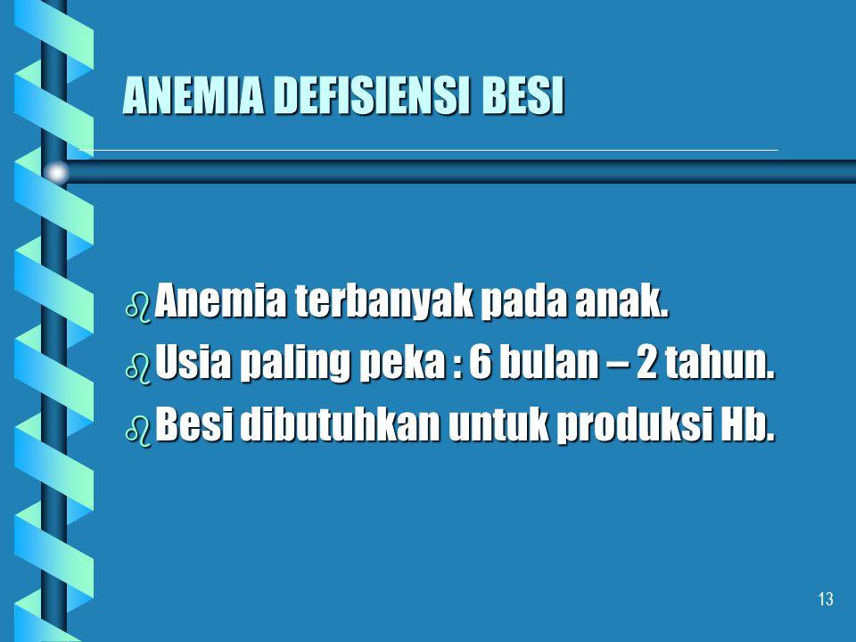 13 ANEMIA DEFISIENSI BESI b Anemia terbanyak pada anak. b Usia paling peka : 6 bulan – 2 tahun. b Besi dibutuhkan untuk produksi Hb.