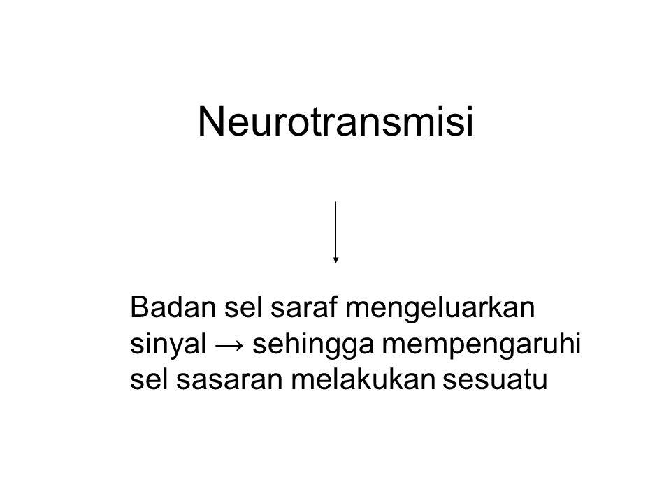 Neurotransmisi Badan sel saraf mengeluarkan sinyal → sehingga mempengaruhi sel sasaran melakukan sesuatu
