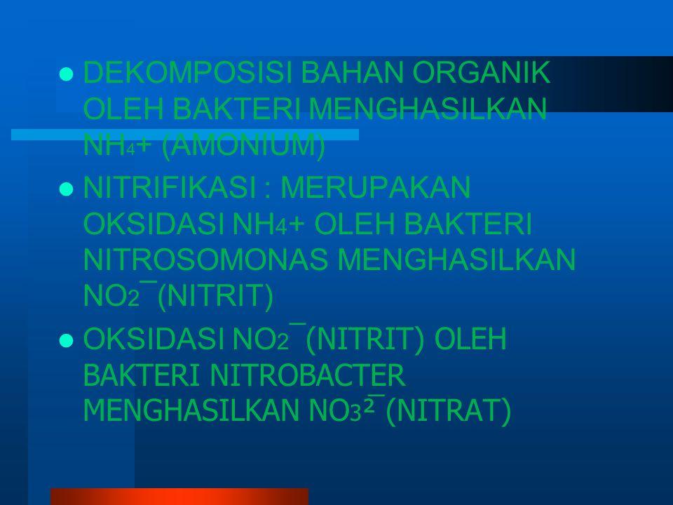 DEKOMPOSISI BAHAN ORGANIK OLEH BAKTERI MENGHASILKAN NH 4 + (AMONIUM) NITRIFIKASI : MERUPAKAN OKSIDASI NH 4 + OLEH BAKTERI NITROSOMONAS MENGHASILKAN NO 2 ¯(NITRIT) OKSIDASI NO 2 ¯(NITRIT) OLEH BAKTERI NITROBACTER MENGHASILKAN NO 3 ²̅ (NITRAT)