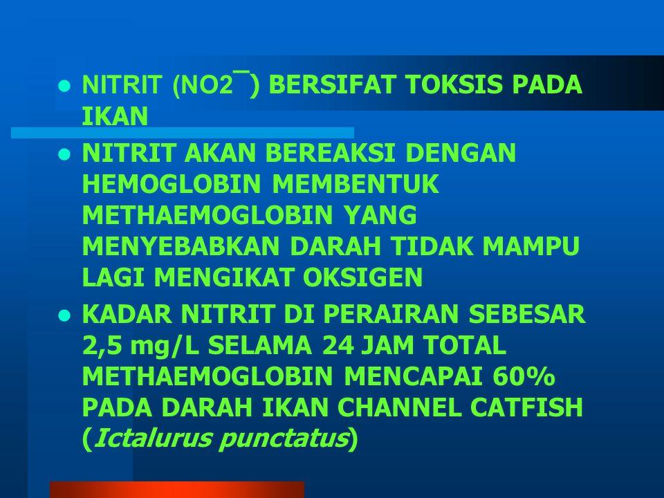 NITRIT (NO2 ̅ ) BERSIFAT TOKSIS PADA IKAN NITRIT AKAN BEREAKSI DENGAN HEMOGLOBIN MEMBENTUK METHAEMOGLOBIN YANG MENYEBABKAN DARAH TIDAK MAMPU LAGI MENGIKAT OKSIGEN KADAR NITRIT DI PERAIRAN SEBESAR 2,5 mg/L SELAMA 24 JAM TOTAL METHAEMOGLOBIN MENCAPAI 60% PADA DARAH IKAN CHANNEL CATFISH (Ictalurus punctatus)