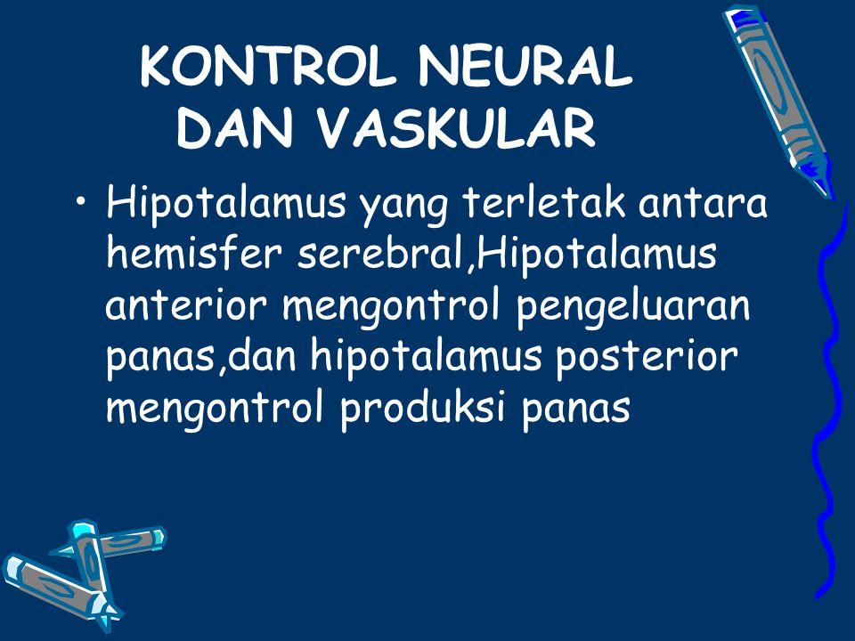 KONTROL NEURAL DAN VASKULAR Hipotalamus yang terletak antara hemisfer serebral,Hipotalamus anterior mengontrol pengeluaran panas,dan hipotalamus posterior mengontrol produksi panas