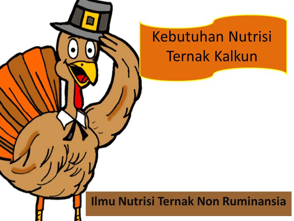 Ilmu Nutrisi Ternak Non Ruminansia Kebutuhan Nutrisi Ternak Kalkun