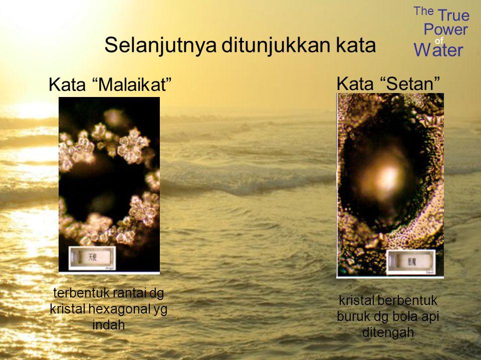 The True Power Water of Selanjutnya ditunjukkan kata terbentuk rantai dg kristal hexagonal yg indah kristal berbentuk buruk dg bola api ditengah Kata Malaikat Kata Setan
