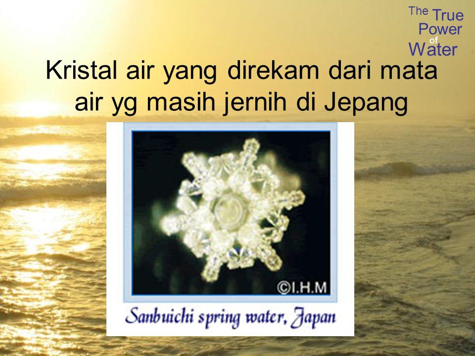The True Power Water of Kristal air yang direkam dari mata air yg masih jernih di Jepang