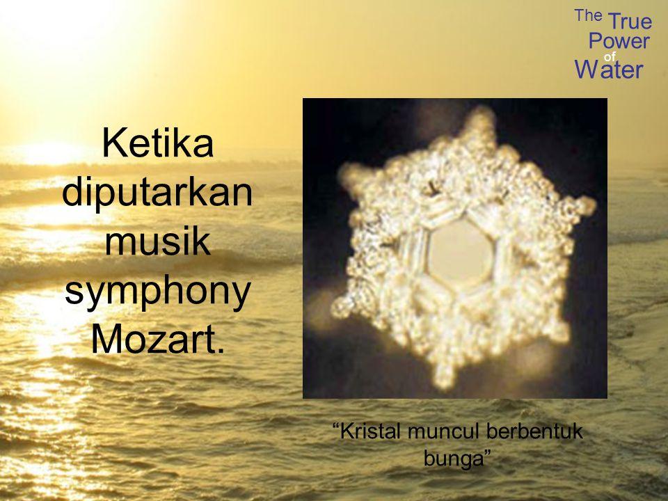 The True Power Water of Ketika diputarkan musik symphony Mozart. Kristal muncul berbentuk bunga