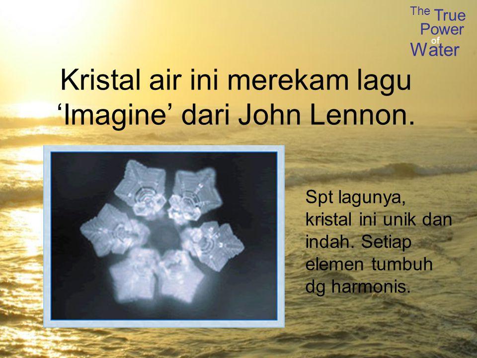 The True Power Water of Kristal air ini merekam lagu 'Imagine' dari John Lennon.