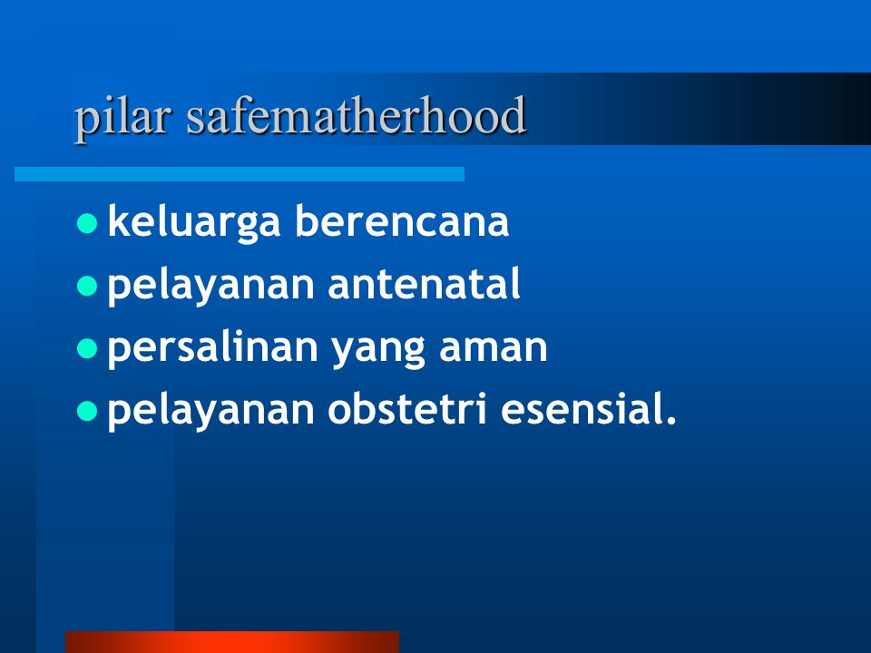 Dukungan pelaksanaan safe matherhood Kebijakan politis, yaitu komitmen dan dukungan dari pimpinan wilayah dengan sector terkait (Tingkat kabupaten / kota, kecamatan, dan pedesaan) yang berkesinambungan dan berkelanjutan dalam pembinaan dan peningkatan untuk pelayanan kesehatan ibu yang terjangkau dalam wadah Gerakan Sayang Ibu.