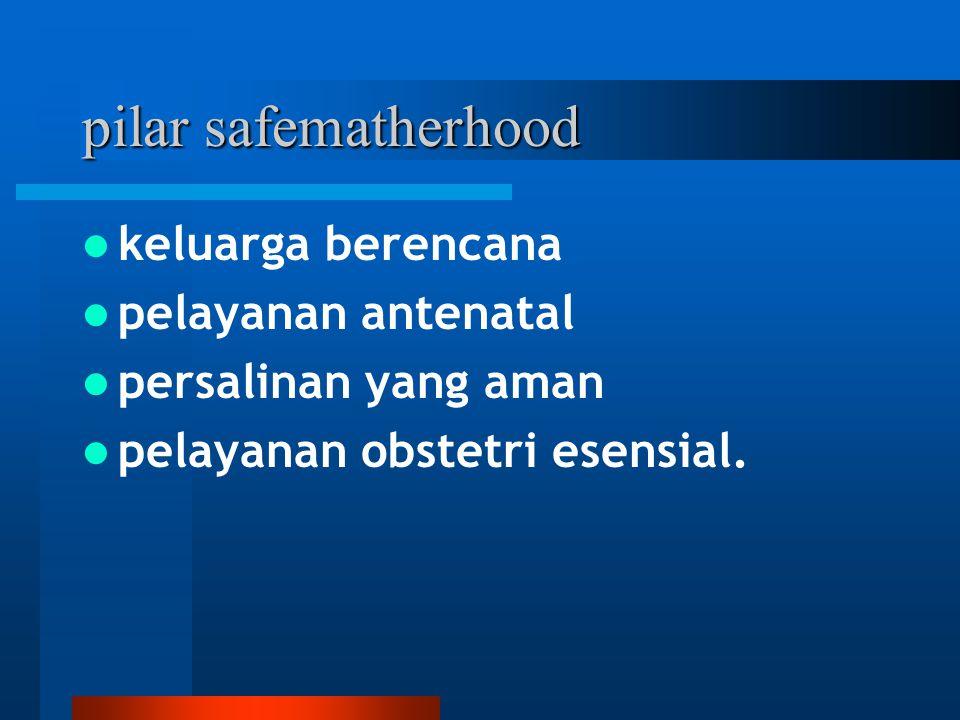 pilar safematherhood keluarga berencana pelayanan antenatal persalinan yang aman pelayanan obstetri esensial.