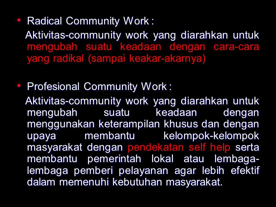 Model Social Planning Model ini terutama menekankan pada suatu proses teknik dalam memecahkan masalah.