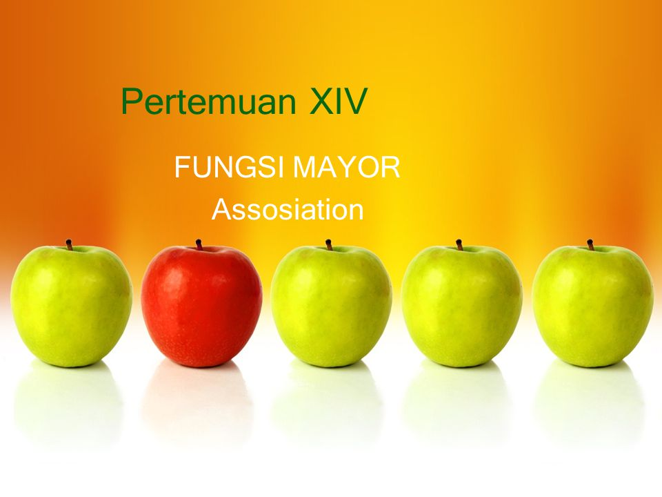 Pertemuan XIV FUNGSI MAYOR Assosiation