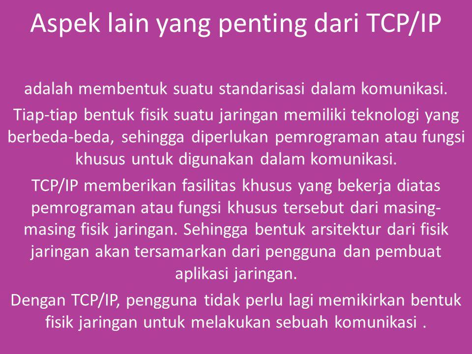 Aspek lain yang penting dari TCP/IP adalah membentuk suatu standarisasi dalam komunikasi.