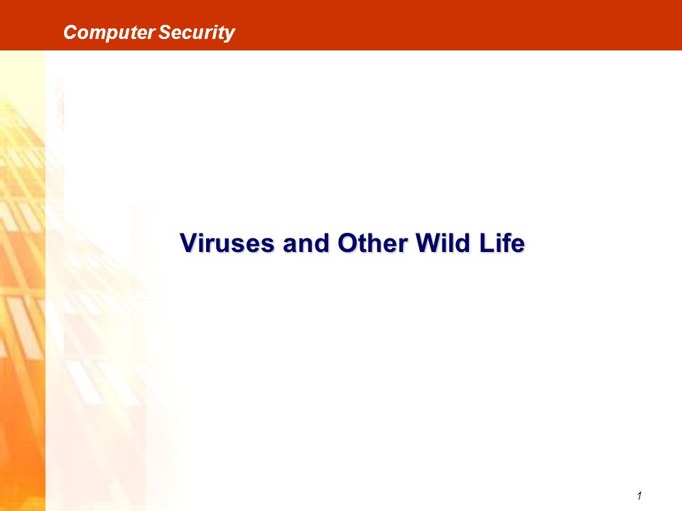 2 Computer Security Viruses and Other Wild Life VirusesWorms Trojan Horses Bombs Trap Doors / Back Doors Other Wild Life
