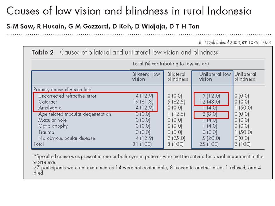 AKSES KESEHATAN Kebutaan di Indonesia sebenarnya bisa diatasi dan dicegah.