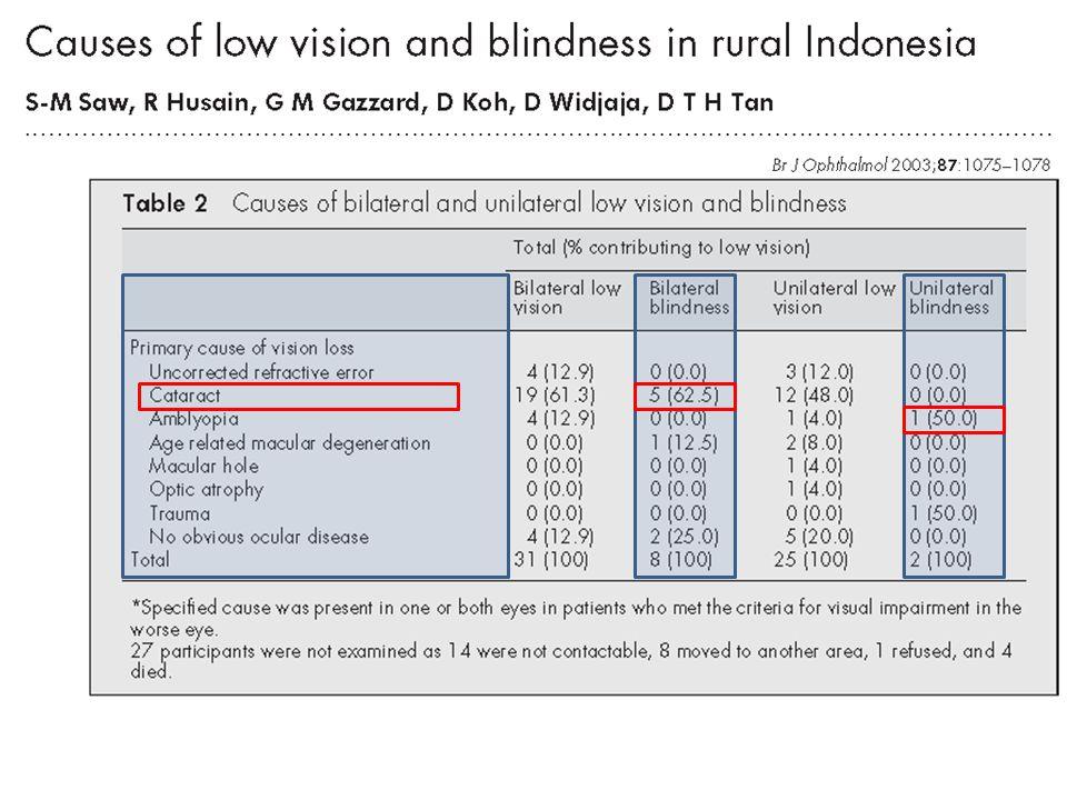 Apa materi penyuluhan yang dapat diberikan untuk pencegahan masalah penglihatan pada masyarakat?