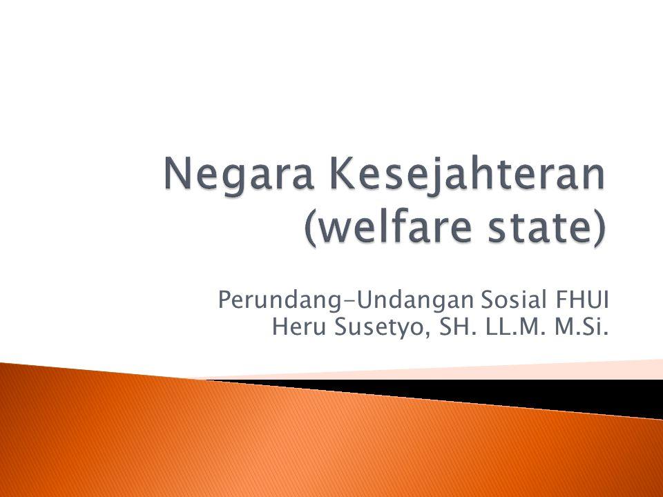 Perundang-Undangan Sosial FHUI Heru Susetyo, SH. LL.M. M.Si.