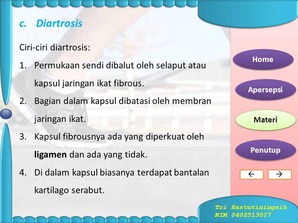 b.Amfiartrosis  Adalah sendi yang dihubungkan oleh kartilago sehingga memungkinkan untuk sedikit gerakan.  Dibagi menjadi dua, yaitu simfisis dan si