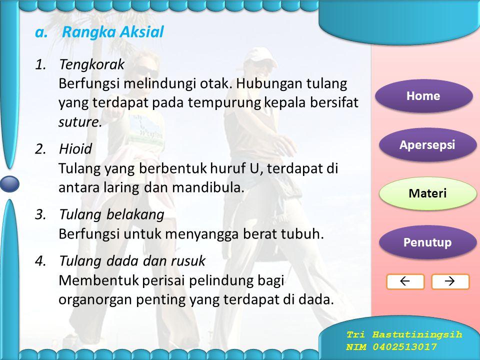 Tengkorak Manusia Home Apersepsi Materi Penutup  Tri Hastutiningsih NIM 0402513017