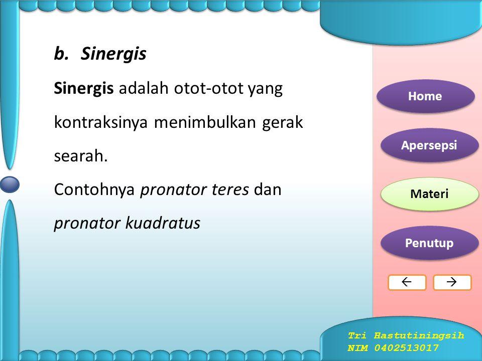 2.Sifat Kerja Otot a.Antagonis Kerja otot yang kontraksinya menimbulkan efek gerak berlawanan. 1.Ekstensor (meluruskan) dan fleksor (membengkokkan). 2