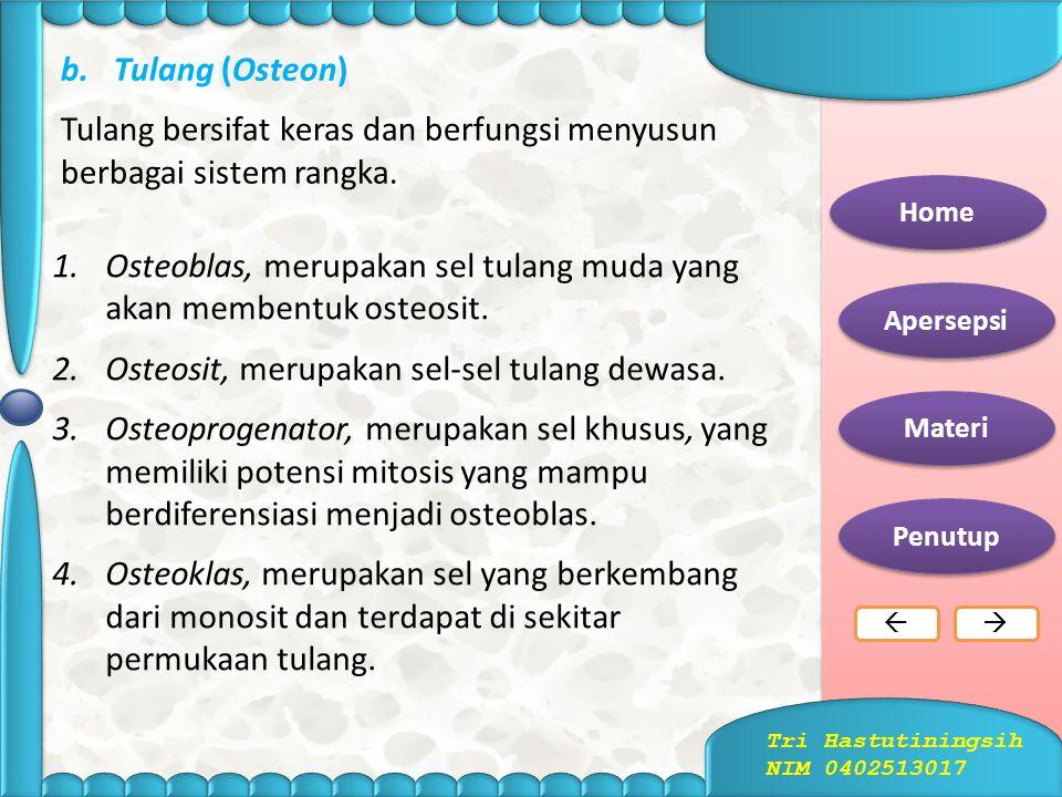 Letak Tulang Rawan pada Tubuh Home Apersepsi Materi Penutup  Tri Hastutiningsih NIM 0402513017