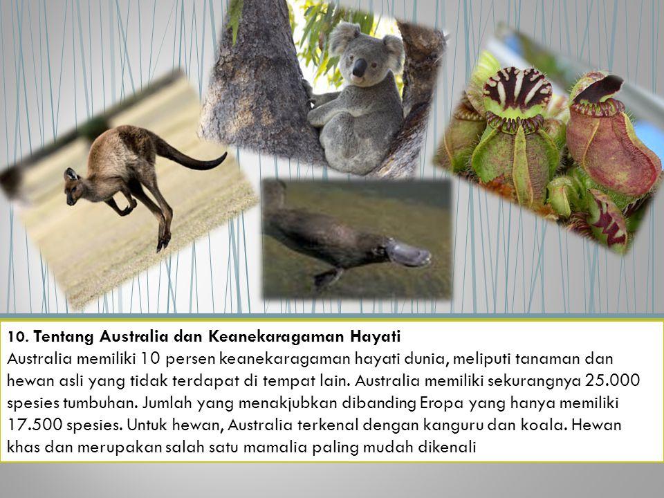 10. Tentang Australia dan Keanekaragaman Hayati Australia memiliki 10 persen keanekaragaman hayati dunia, meliputi tanaman dan hewan asli yang tidak t