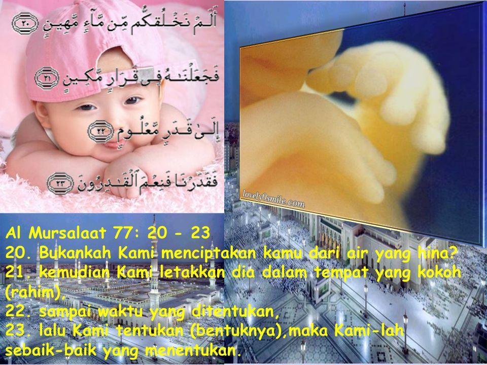 Al Mursalaat 77: 20 - 23 20.Bukankah Kami menciptakan kamu dari air yang hina.
