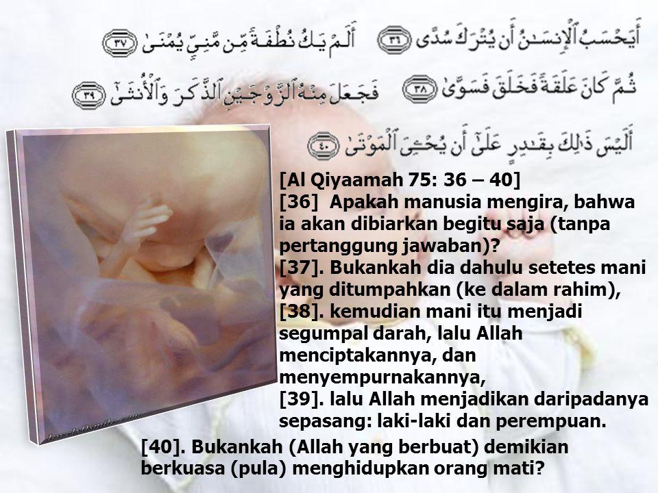 [Al Qiyaamah 75: 36 – 40] [36] Apakah manusia mengira, bahwa ia akan dibiarkan begitu saja (tanpa pertanggung jawaban).