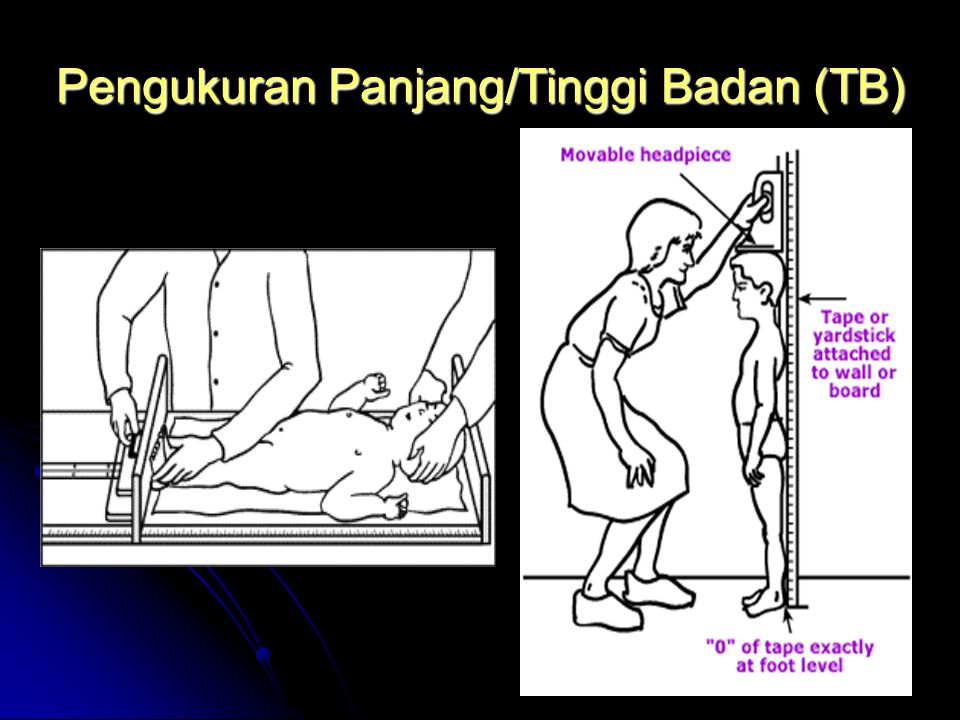 Pengukuran Panjang/Tinggi Badan (TB)