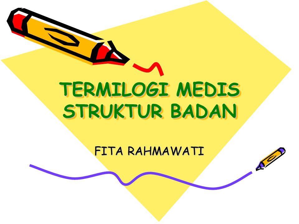 TERMILOGI MEDIS STRUKTUR BADAN FITA RAHMAWATI