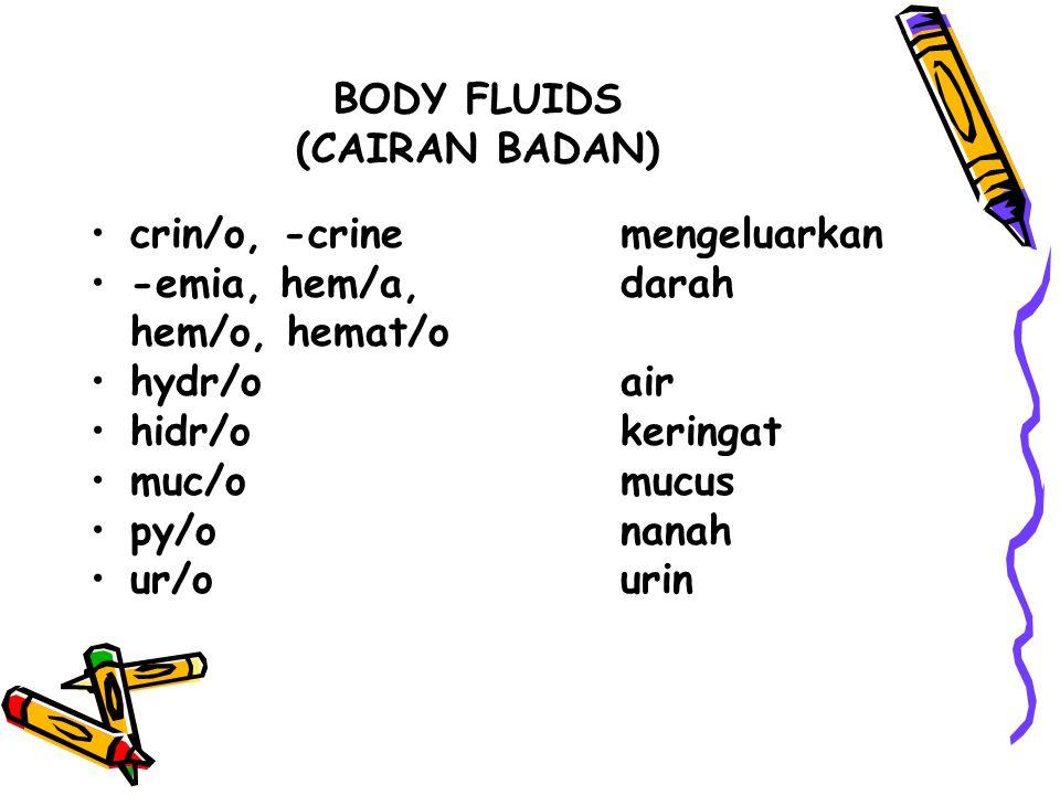 BODY FLUIDS (CAIRAN BADAN) crin/o, -crinemengeluarkan -emia, hem/a,darah hem/o, hemat/o hydr/oair hidr/okeringat muc/omucus py/onanah ur/ourin