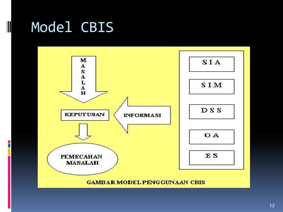 12 Model CBIS