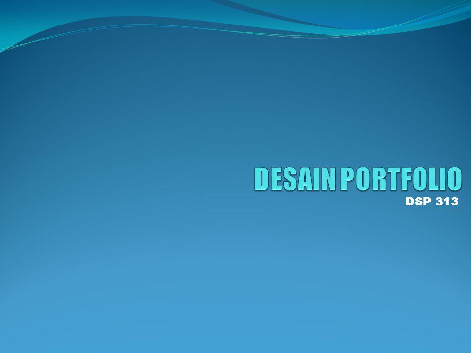 DSP 313