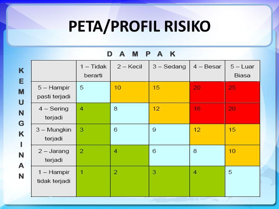 PETA/PROFIL RISIKO