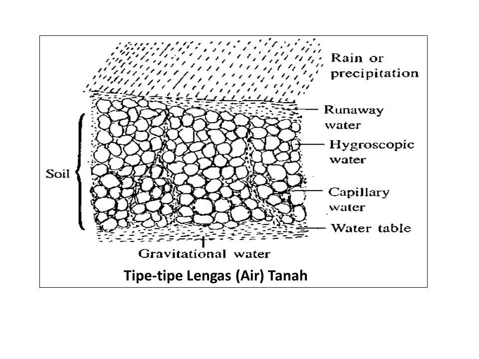 Model transport ion melintasi plasmalemma dan tonoplast.