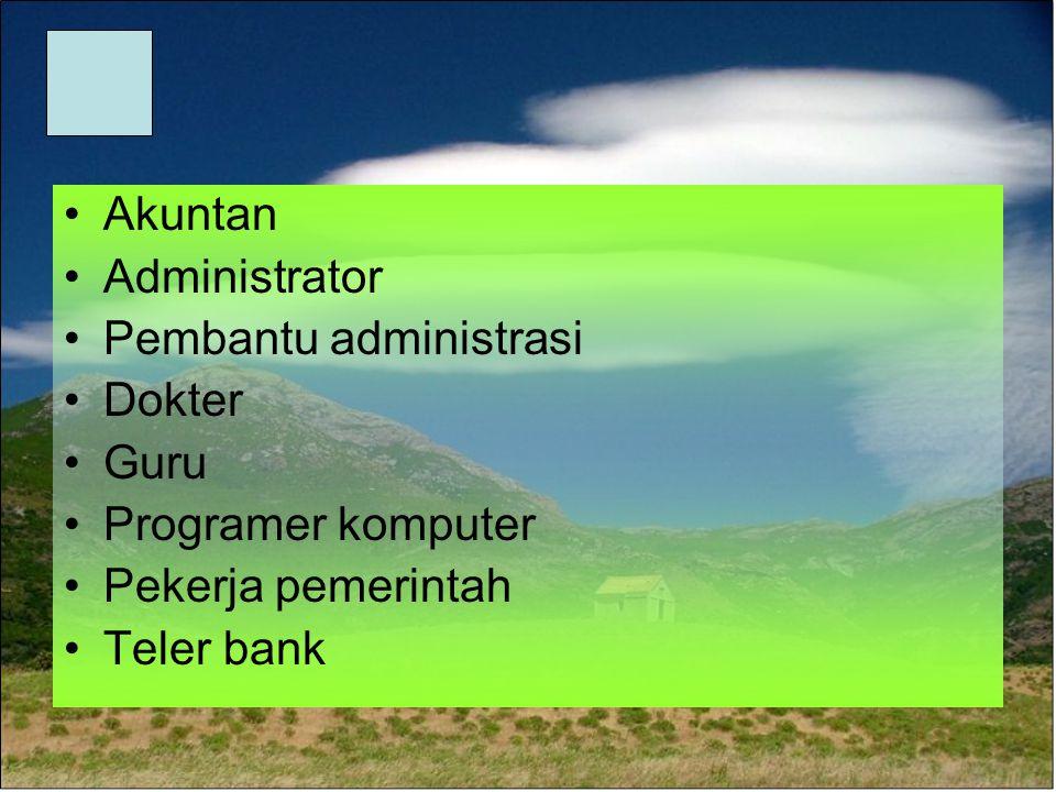 Akuntan Administrator Pembantu administrasi Dokter Guru Programer komputer Pekerja pemerintah Teler bank