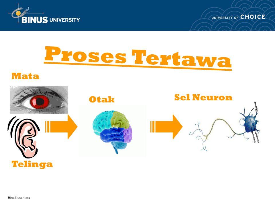 Bina Nusantara Mata Telinga Proses Tertawa Otak Sel Neuron