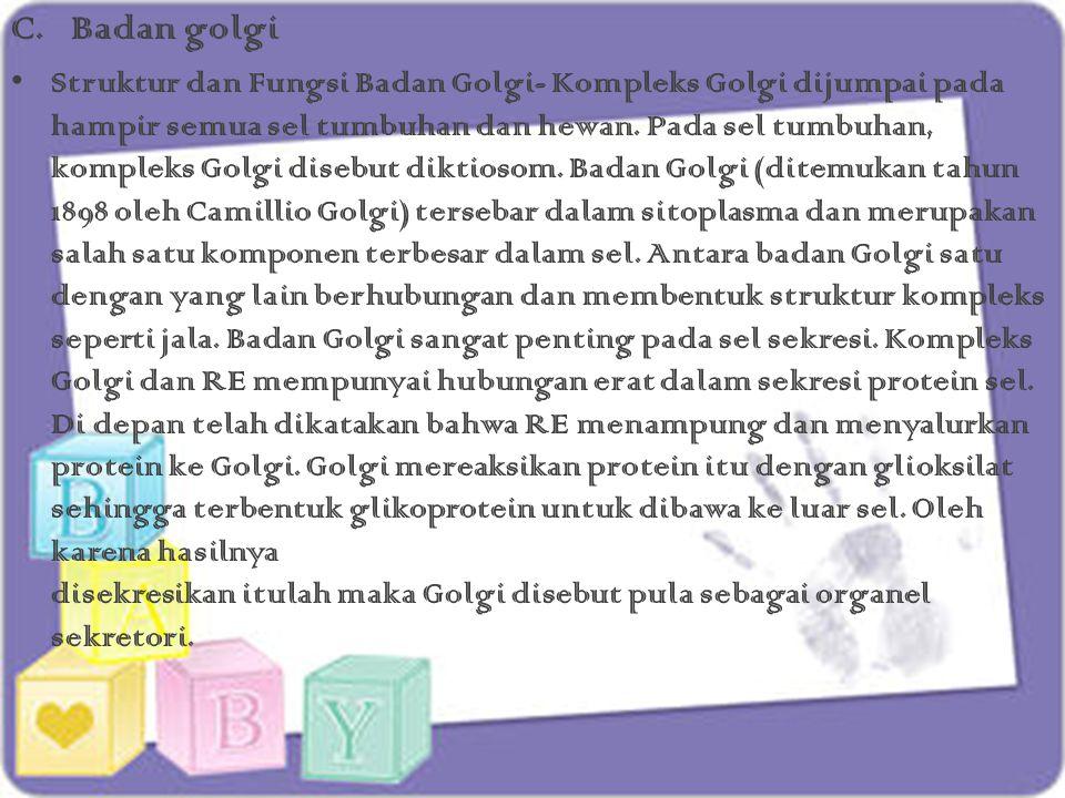 C.Badan golgi Struktur dan Fungsi Badan Golgi- Kompleks Golgi dijumpai pada hampir semua sel tumbuhan dan hewan. Pada sel tumbuhan, kompleks Golgi dis