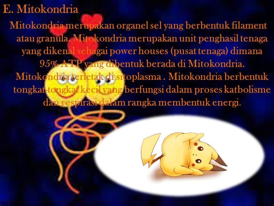 E. Mitokondria Mitokondria merupakan organel sel yang berbentuk filament atau granula. Mitokondria merupakan unit penghasil tenaga yang dikenal sebaga