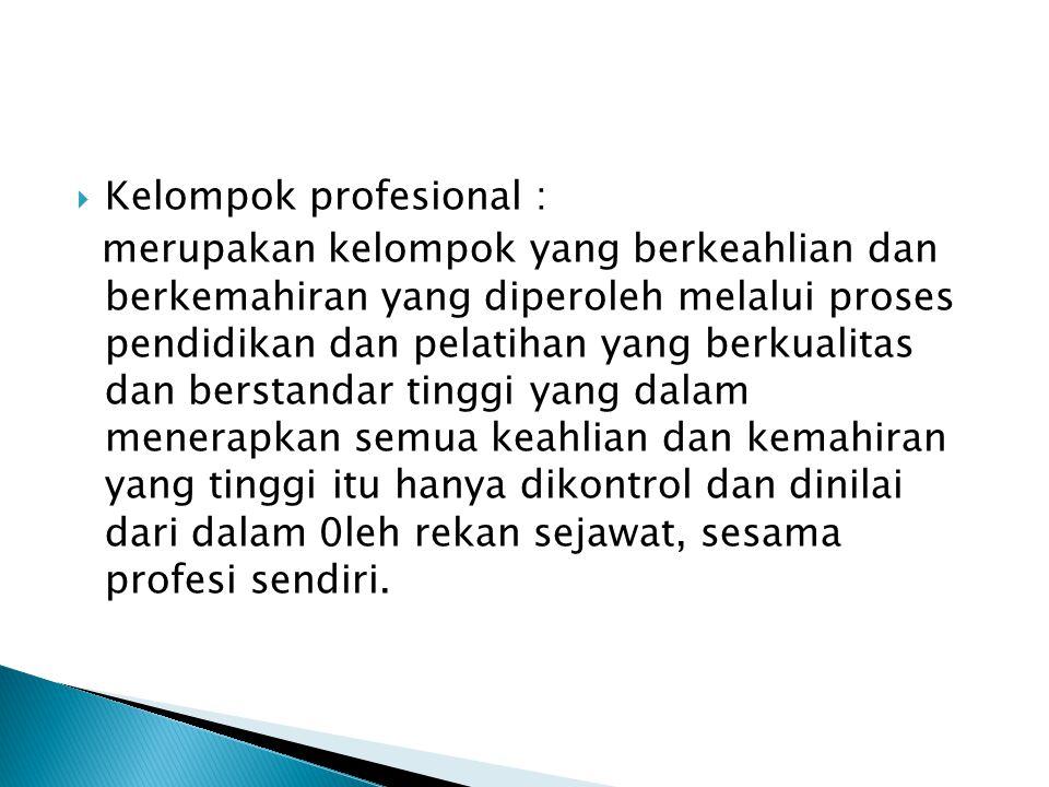  Kelompok profesional : merupakan kelompok yang berkeahlian dan berkemahiran yang diperoleh melalui proses pendidikan dan pelatihan yang berkualitas dan berstandar tinggi yang dalam menerapkan semua keahlian dan kemahiran yang tinggi itu hanya dikontrol dan dinilai dari dalam 0leh rekan sejawat, sesama profesi sendiri.