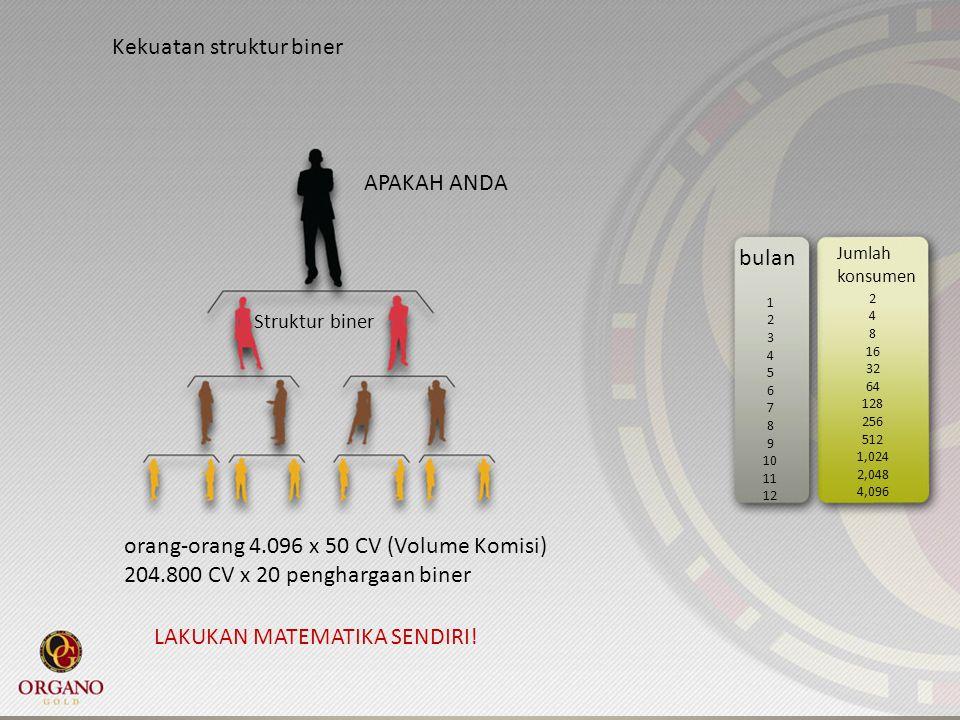 Kekuatan struktur biner Struktur biner APAKAH ANDA bulan Jumlah konsumen 1 2 3 4 5 6 7 8 9 10 11 12 2 4 8 16 32 64 128 256 512 1,024 2,048 4,096 orang