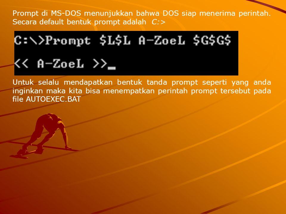 Prompt di MS-DOS menunjukkan bahwa DOS siap menerima perintah. Secara default bentuk prompt adalah C:> Untuk selalu mendapatkan bentuk tanda prompt se